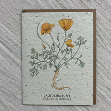 Load image into Gallery viewer, Seed Cards from The Bower Studio