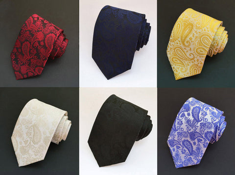 Mens Paisley Dress Tie Formal Suit Business Work Wedding Ties