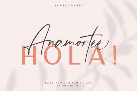 Anamortee // Modern Calligraphy Font - Vultype Co