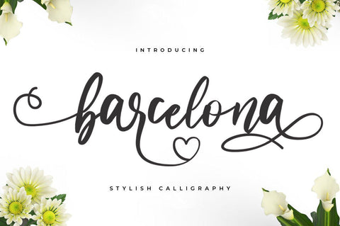 Barcelona - Lovely calligraphy font - Vultype Co