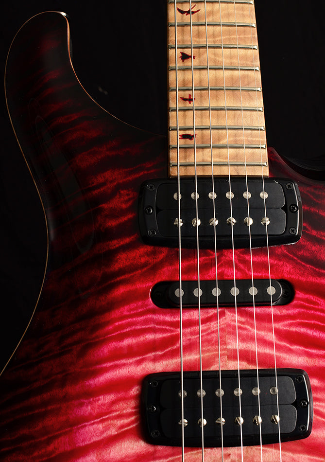 Paul Reed Smith Private Stock Modern Eagle V Graveyard Red Glow Brian's Guitars 10th Anniversary