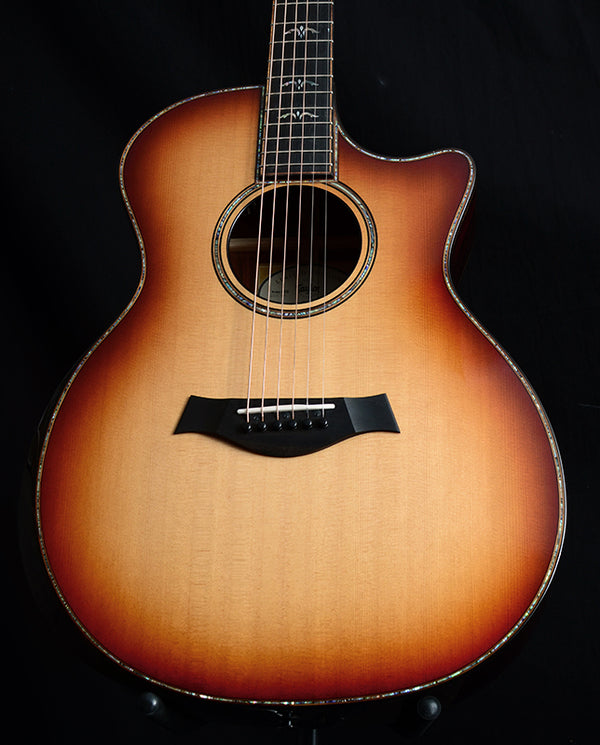 Used Taylor 914ce LTD Cocobolo-Acoustic Guitars-Brian's Guitars