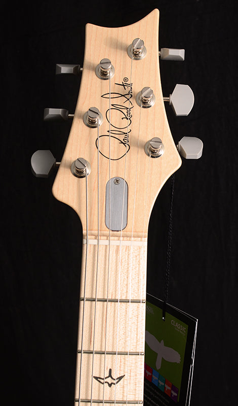 Paul Reed Smith Silver Sky John Mayer Signature Model Frost-Brian's Guitars