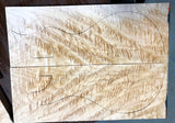 Paul Reed Smith Wood Library Modern Eagle V Brian's Limited