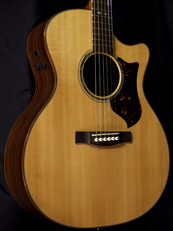 Used Martin Performing Artist GPCPA1-Brian's Guitars