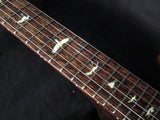 Paul Reed Smith Private Stock DC245 Zombie Fade #1-Brian's Guitars
