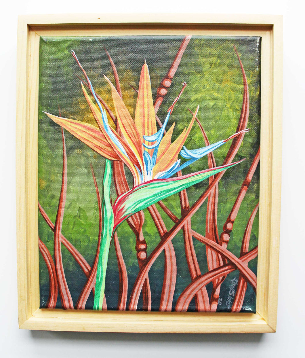 Bird of Paradise Geoff Slater