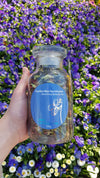Bewitching Butterfly Pea Tea - Blue Tea Jar 100g
