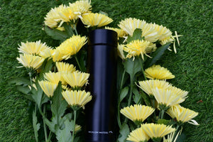 Smart LED Temperature Display Vacuum Insulated Water Bottle. - Wicklow Waters