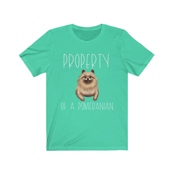 Property Of A Pomeranian
