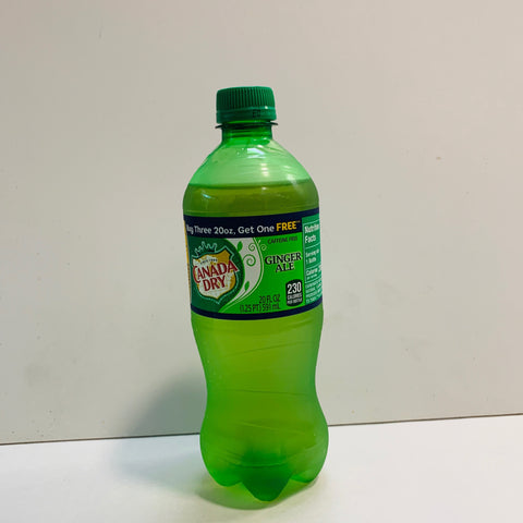 Canada Dry Ginger Ale Seltzer  -- 20 Oz Bottle - Earth's Basket