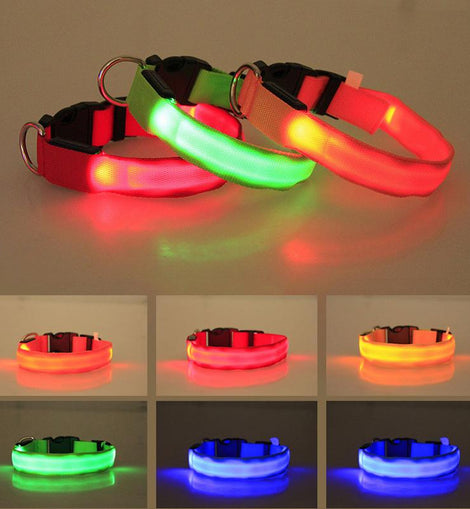 Night LED Pet Collar