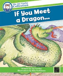 If You Meet a Dragon... (Small Book) 9781877454813