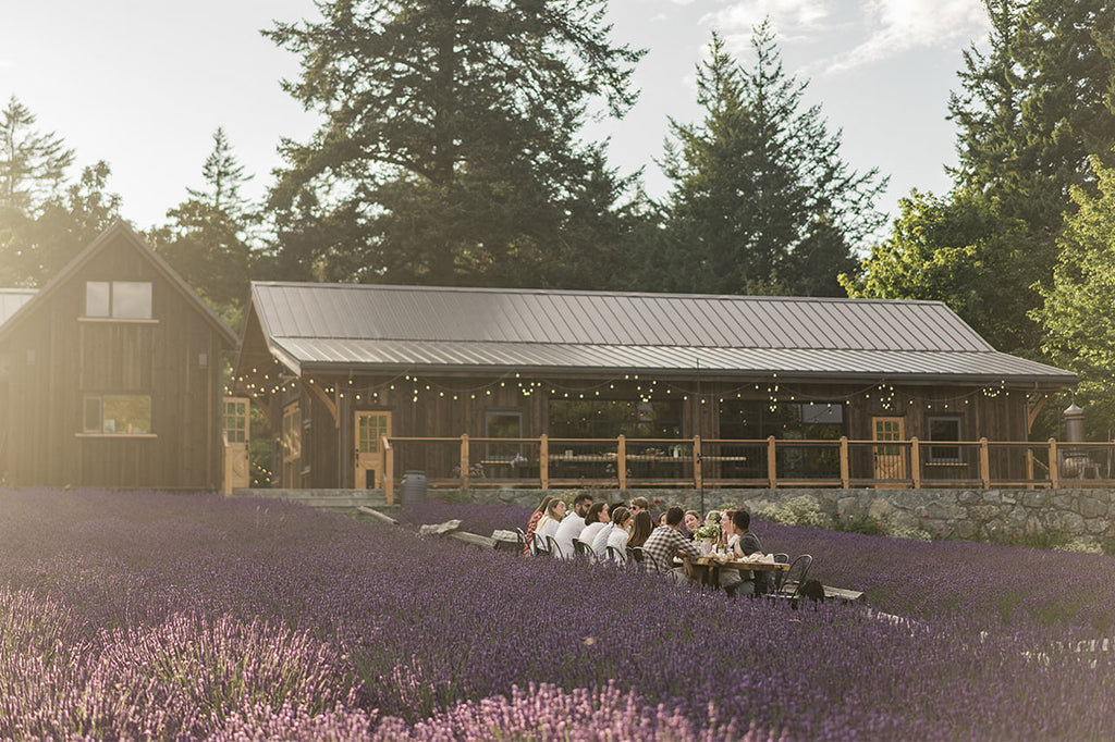 Bilston Creek Farm | Lavender Farm