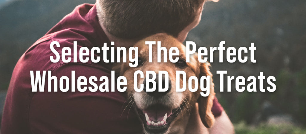 Selecting The Perfect Wholesale CBD Dog Treats