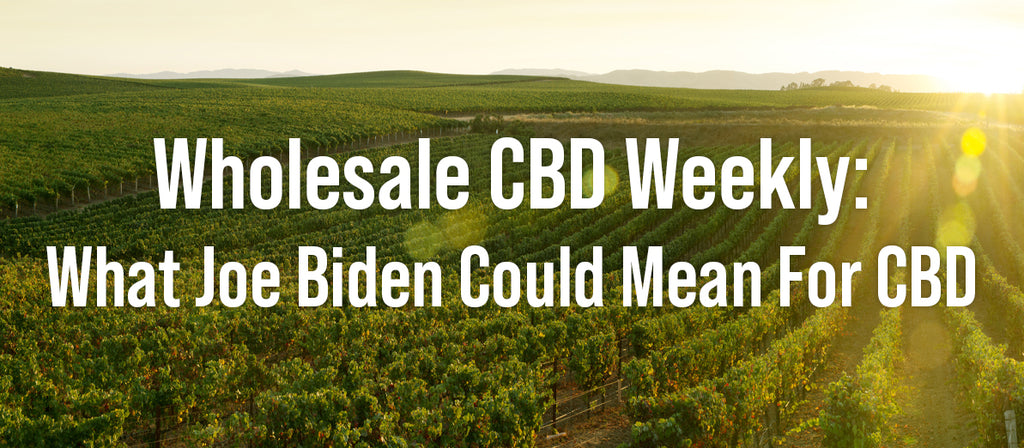 CBD Wholesale Weekly: What Joe Biden Could Mean For CBD