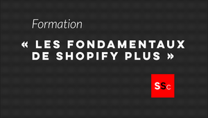 "ShopiShopa Consulting launching ""The Shopify Plus Fundamentals"" seminar"