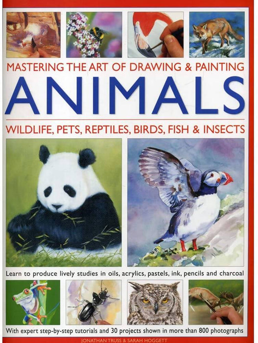 Mastering Art Of Drawing & Painting - Animals