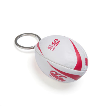 BRITISH & IRISH LIONS SPONSOR KEYRING