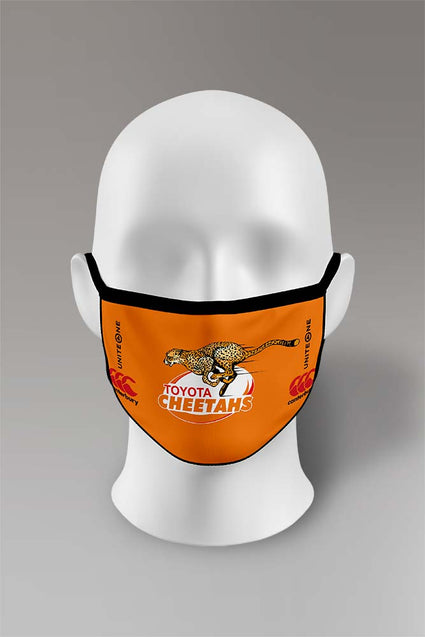 Cheetahs Mask 2 Pack | Adult