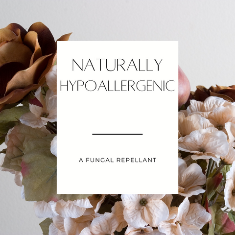 Naturally hypoallergenic silk