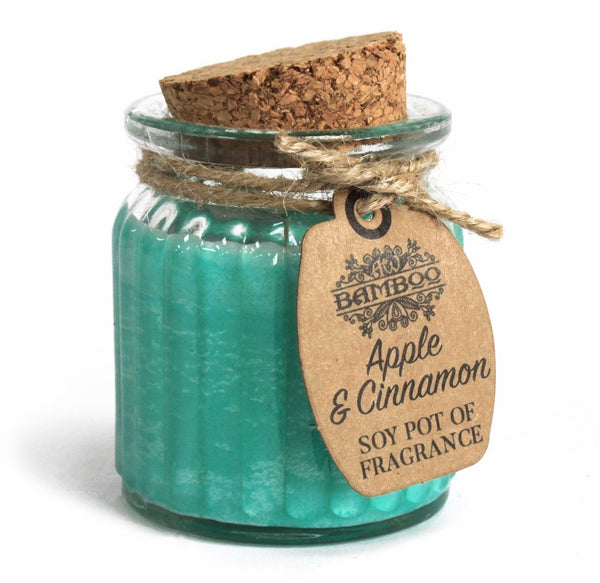 Apple & Cinnamon Soy Pot of Fragrance Candle