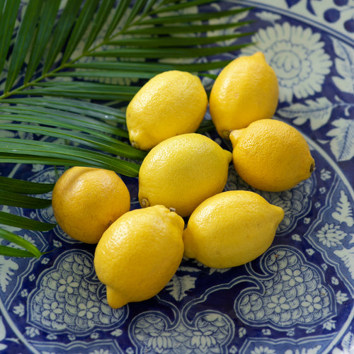 lemon-from-egypt-online-grocery-supermarket-delivery-singapore-thenewgrocer