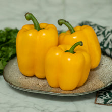 Load image into Gallery viewer, yellow-capsicum-online-grocery-supermarket-delivery-singapore-thenewgrocer