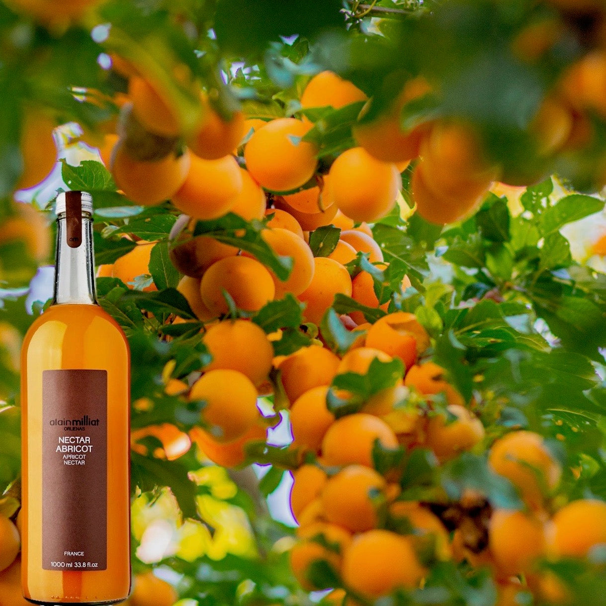 Apricot-nectar-alain-milliat-online-grocery-delivery-singapore-thenewgrocer
