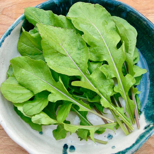 arugula-salad-grocery-delivery-singapore-thenewgrocer