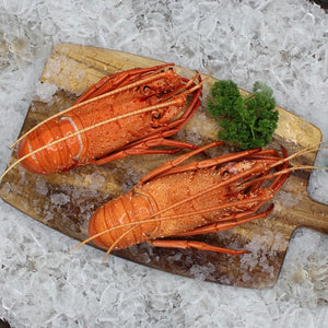 Lobster from USA Frozen (2pcs x 500g)