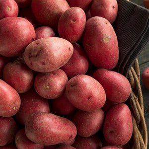aus-red-skin-potato-online-grocery-supermarket-delivery-singapore-thenewgrocer