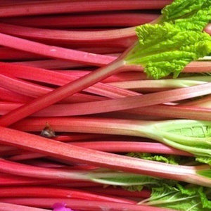 Shop Rhubarb puree in Singapore - The New Grocer