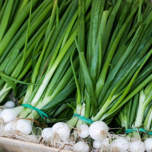 spring-onion-grocery-delivery-singapore-supermarket-thenewgrocer