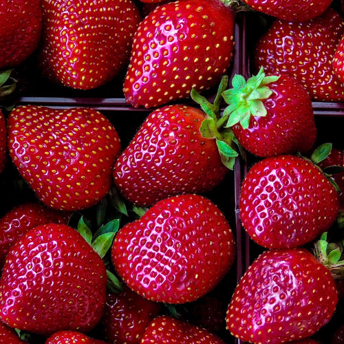 Shop Strawberries frozen in Singapore - The New Grocer