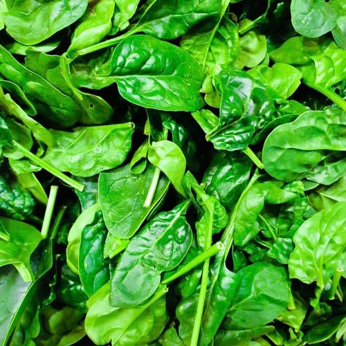 baby-spinach-online-grocery-delivery-singapore-thenewgrocer