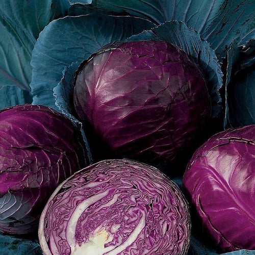 cabbage-red-australia-online-grocery-delivery-singapore-thenewgrocer