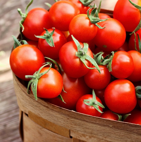 chemical-free-tomato-cherry-cameron-online-grocery-delivery-singapore-thenewgrocer