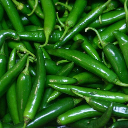 chili-padi-green-online-grocery-delivery-singapore-thenewgrocer