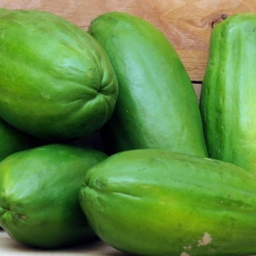 green-papaya-online-delivery-grocery-supermarket-singapore-thenewgrocer