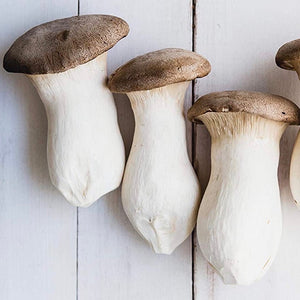 mushroom-king-online-grocery-supermarket-delivery-singapore-thenewgrocer