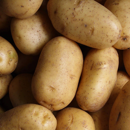 Buy premium potato in Singapore - The New Grocer