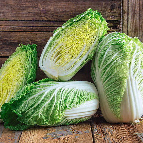 chinese-cabbage-online-grocery-supermarket-delivery-singapore-thenewgrocer