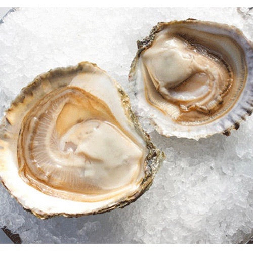 oysters-belon-online-grocery-supermarket-singapore-delivery-thenewgrocer