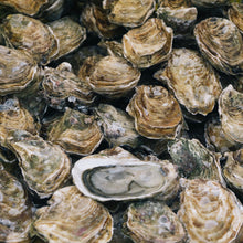 "Load image into Gallery viewer, Oysters ""La Lune N.2"" (12 pcs)"