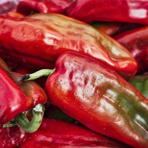 Shop Piquillo Pepper in Singapore - The New Grocer