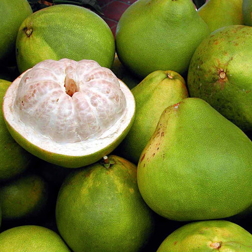 pomelo-online-grocery-delivery-singapore-thenewgrocer