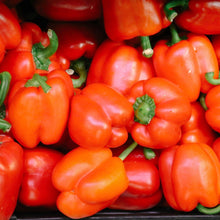 Load image into Gallery viewer, red-capsicum-online-grocery-supermarket-delivery-singapore-thenewgrocer