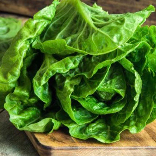 romaine-lettuce-online-grocery-supermarket-delivery-singapore-thenewgrocer