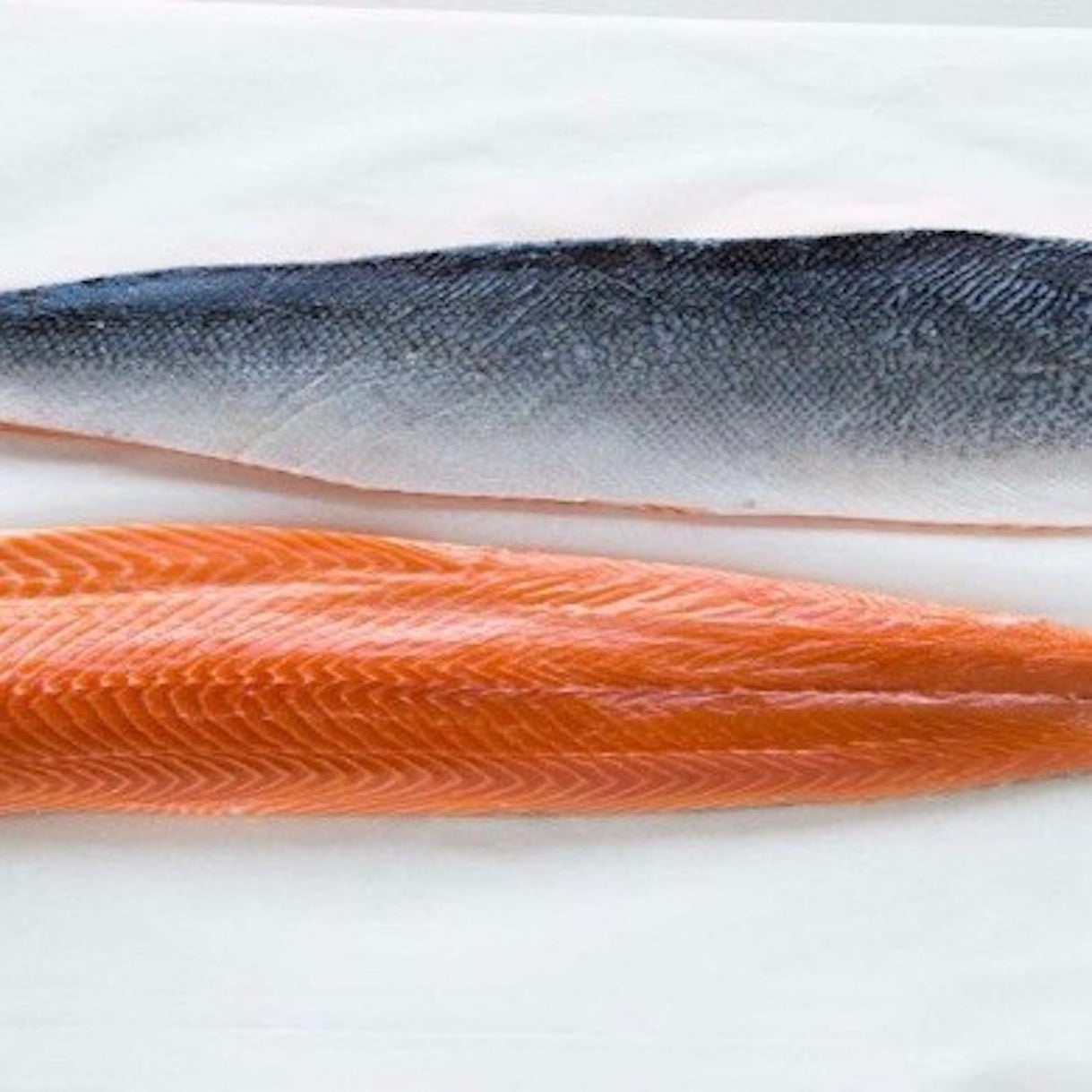 Buy Salmon Fillet | Singapore | The New Grocer